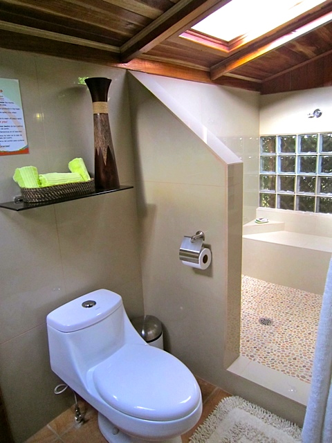physis-caribbean-room#4-shower